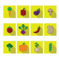 A collection of vegetables