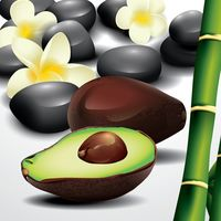 Avocado with spa pebbles and bamboo shoots