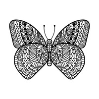 Butterfly monochrome design