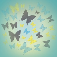 Faceted butterflies