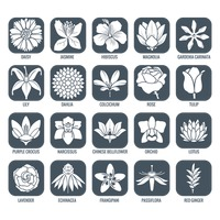 Flower icons