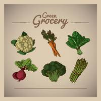 Green grocery icons set