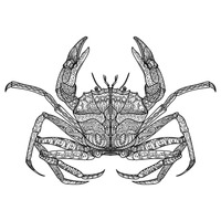 Intricate crab design