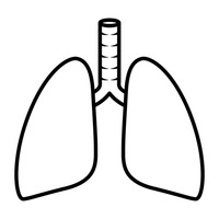 Lung outline clipart - ClipartFest