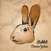Rabbit chinese zodiac
