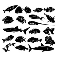 Silhouette of sea fishes