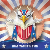 Popular : Usa wants you poster