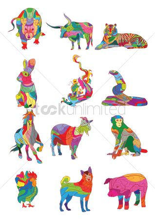 Animal : Colorful animals