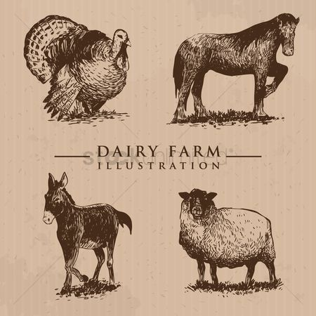 Grunge : Dairy farm animals set