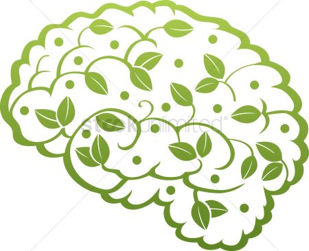 Brain : Human brain with leaves