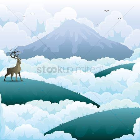 Birds : Mountain landscape
