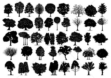 Tree : Silhouette of different tree types