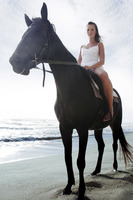 A lady horse riding on the beach