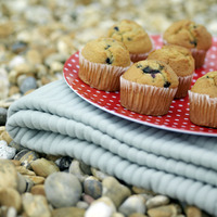 A tray of muffins on a folded picnic blanket
