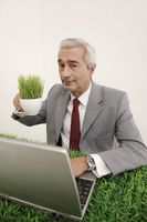Businessman holding a cup of grasses while using laptop