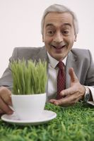 Businessman holding a cup of grasses