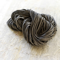 Dried squid ink pasta nero