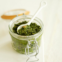Fresh italian pesto in a glass jar with a white ceramic spoon