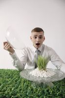 Man looking at grass on cake stand with opened mouth