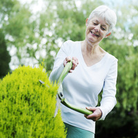 Senior woman pruning bush with hedge clippers