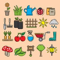 Popular : A collection of garden items