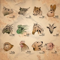Collection of chinese zodiac symbols