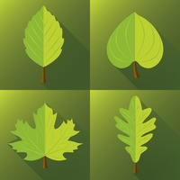 Collection of green leaves in go green concept