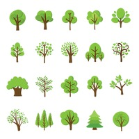 Popular : Collection of various trees
