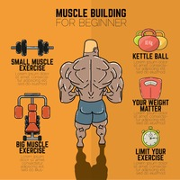 Popular : Muscle building infographic