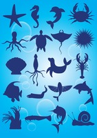 Silhouette of aquatic animals