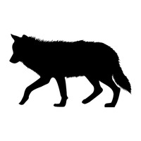 silhouette of wolf stock vector