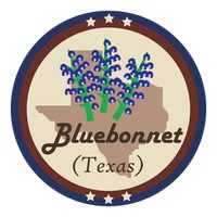 Texas state with bluebonnet flower