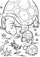 Tortoise with tortoise hatchlings