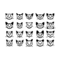 Various cat faces