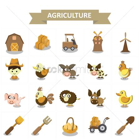 Cow : Agriculture collection