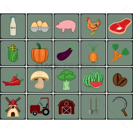 Watermelon : Agriculture icon set