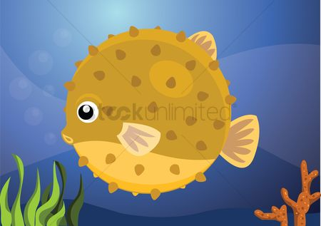 Grass background : An puffer fish