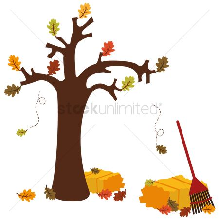 Broom : Autumn tree