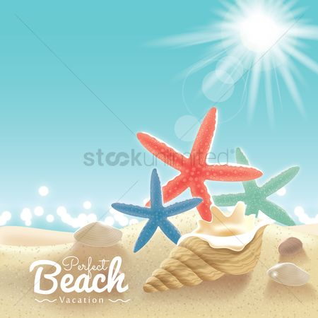 Starfishes : Beach vacation background
