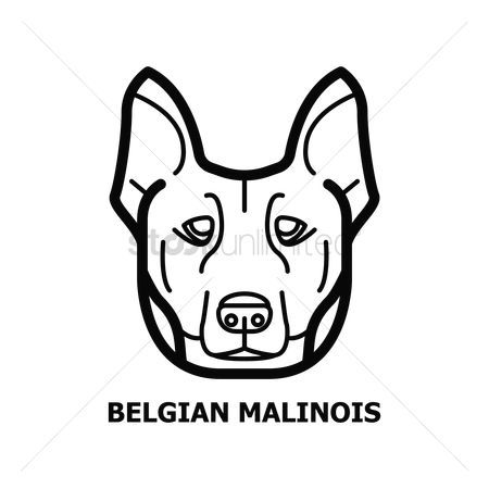 Belgian Malinois Dog Dog Drawings And Pictures T