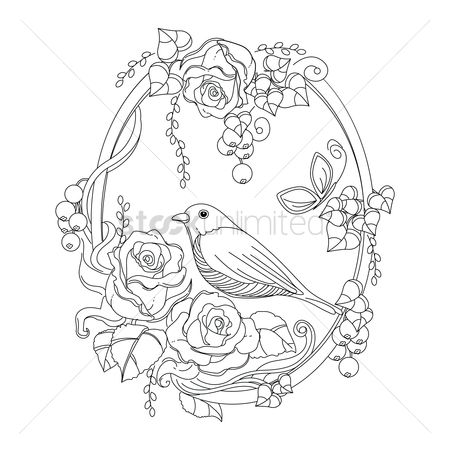 Sketching : Bird in floral frame design