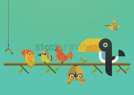 Owl : Birds sitting on wooden stick