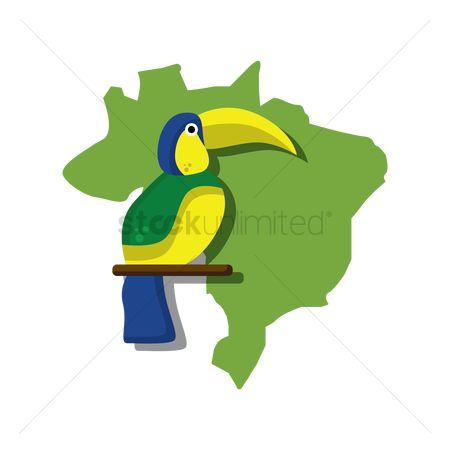 Toco toucan : Brazil map with toco toucan