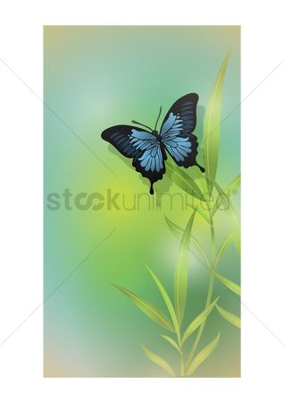 Stems : Butterfly on a plant
