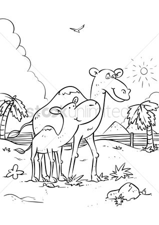 Grass : Camel with camel calves