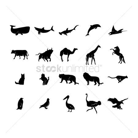 Hawks : Collection of animal and bird silhouettes