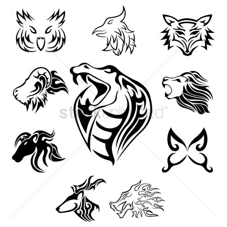 Hawks : Collection of animal tattoos