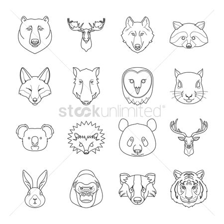 Linear : Collection of animals