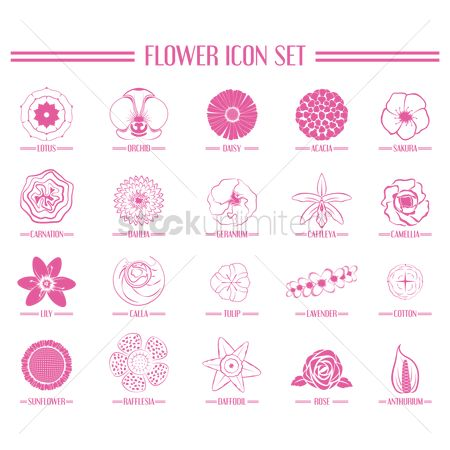 Rose : Collection of flower icons
