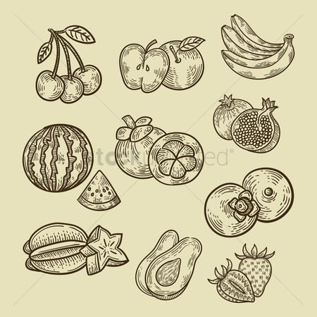 Fresh : Collection of fruits